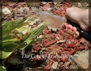 Core of Friendship 2