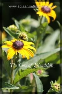 Core of Friendship 4