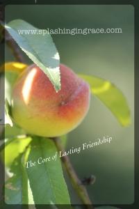 Core of Friendship
