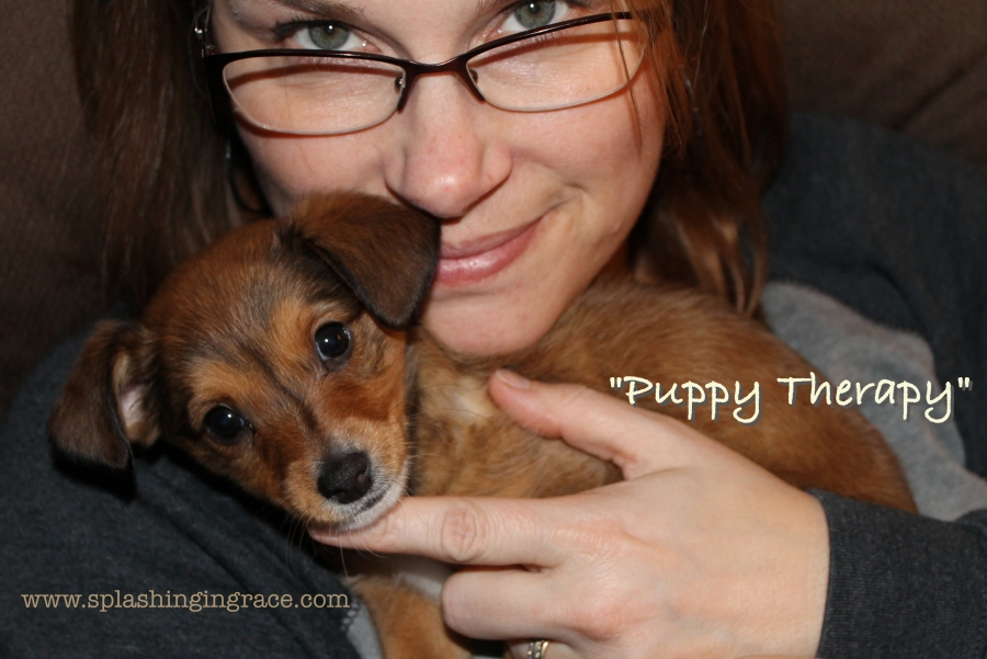 Blog Puppy Therapy.jpg